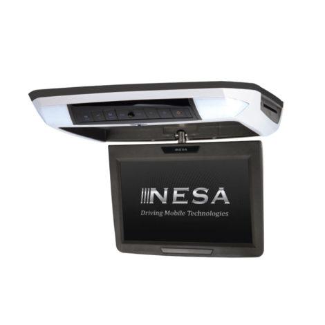 NSC-113