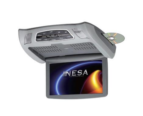 NSC-101
